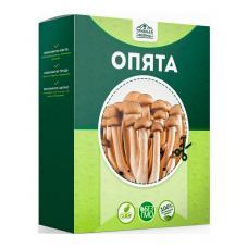 Наборы для выращивания грибов Опята
